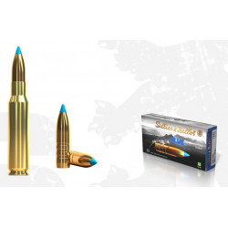 Ammo 308 Win 165Gr S&B TXRG...