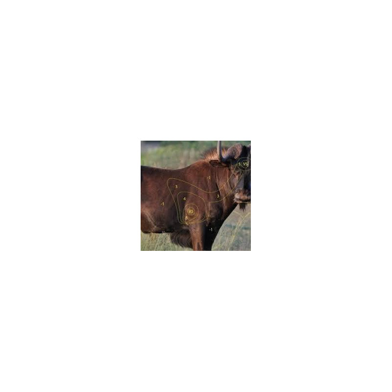 Target Garipani Blouwildebees
